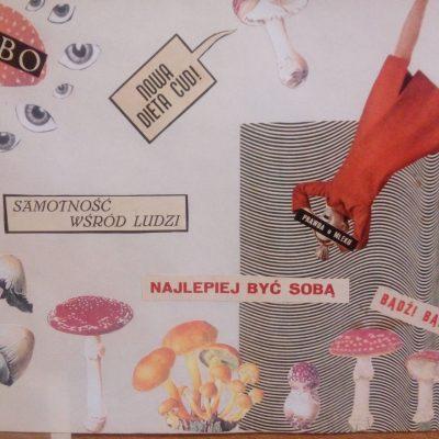 Alicja Sławska 2e, collage
